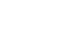 DSF Corporate Member Django Bronze